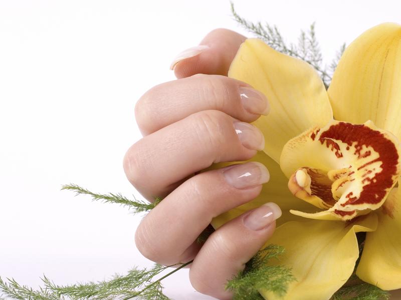 OK Nail   Nail Salon in Concord NH   nail salon 03301 NH   Best nail ...